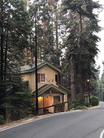 フィッシュ キャンプ Image