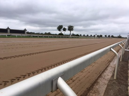 Thoroughbred Heritage Horse Farm Tours: Quiet track at Keeneland