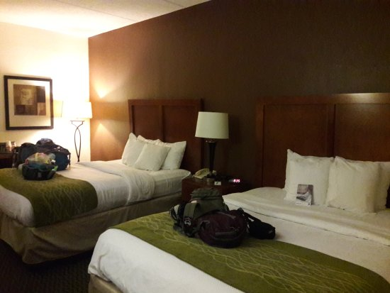 Comfort Inn : Lovely rooms with spacious beds