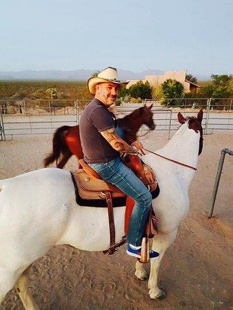 Yucca, AZ: Activity