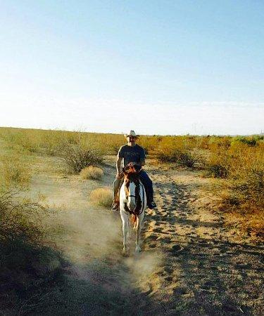 Yucca-billede