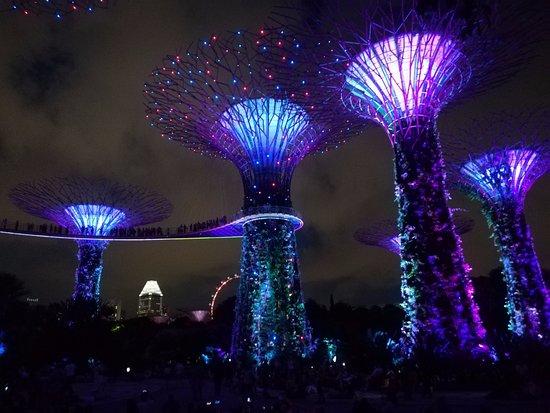 gardens by the bay espectculo de luz color y msica al anochecer con los