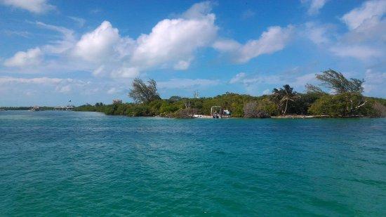 Caye Caulker, Belize: P_20171009_142443_large.jpg