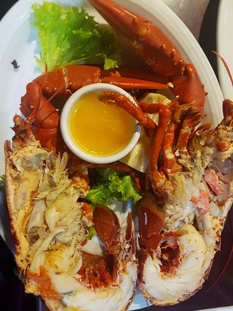 New Quay, İrlanda: Lobster