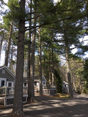 Lincolnville, ME: Outdoor Cottage 6, 7, 8