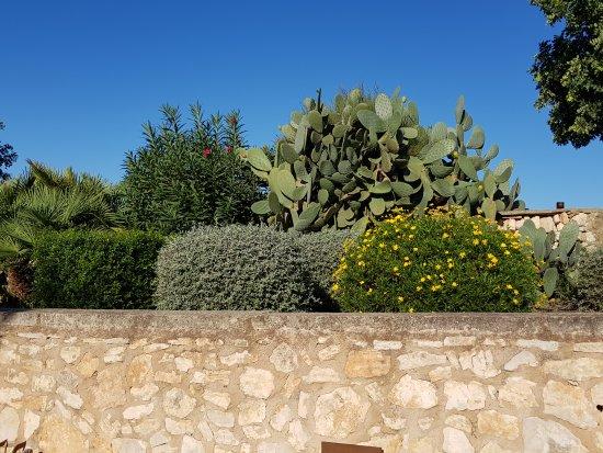 Sant Llorenç des Cardassar, Spanje: Wunderschönes Ambiente