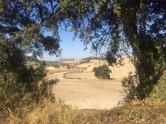Andalucian Cycling Experience Day Trips: Beautiful scenery