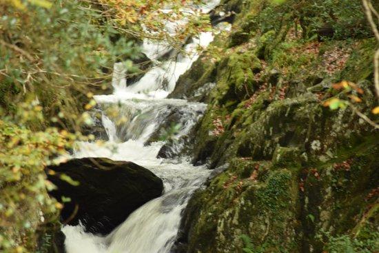 Dyffryn Ardudwy, UK: waterfalls 10 minutes away