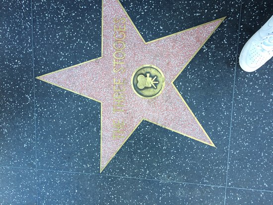 Hollywood Walk Of Fame Los Angeles Ca Top Tips Before
