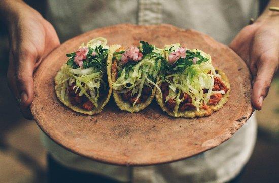 Restaurare: Pibil tacos wuth handmade tortillas.