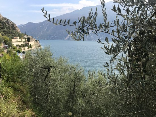 Hotel Capo Reamol : Blick auf Cap Reamol
