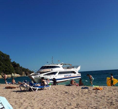 Fenals Beach : Coastal boat docking