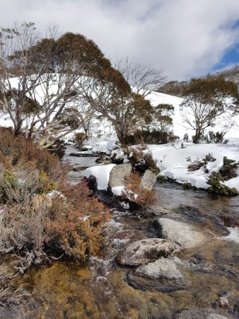 Тредбо-Виллидж, Австралия: Cascades Trail - Alpine Way near Thredbo