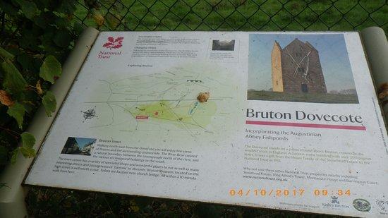 Bruton Photo