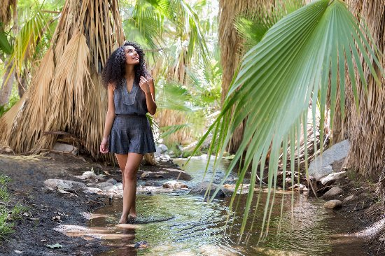 Palm Springs, CA: Endless Escape at Indian Canyons