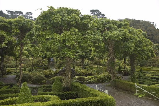 Bantry House & Garden: The circle of wisteria, must be gorgeous in the spring