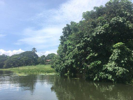Lake Nicaragua, Nicaragua: photo6.jpg
