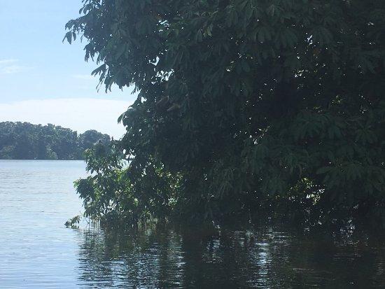 Lake Nicaragua, Nicaragua: photo7.jpg