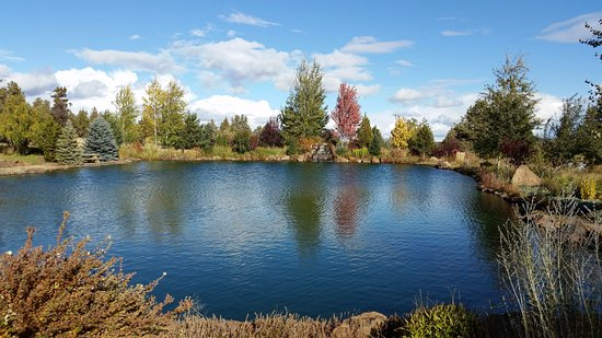 Terrebonne, OR: outside pond