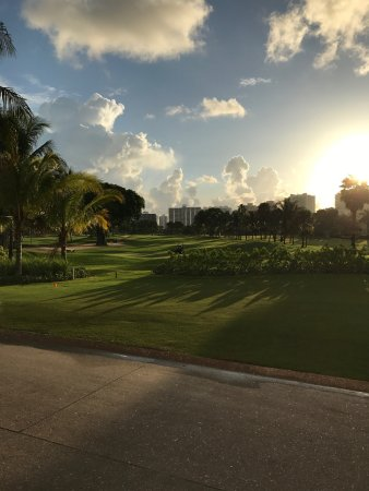 Turnberry Isle Miami, Autograph Collection: 9th Green Miller Course