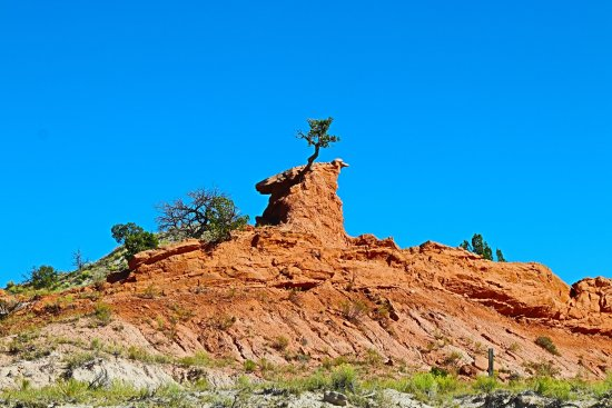 New Mexico Jeep Tours: I call it the duck rock!