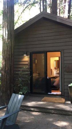 Glen Oaks Big Sur: photo6.jpg