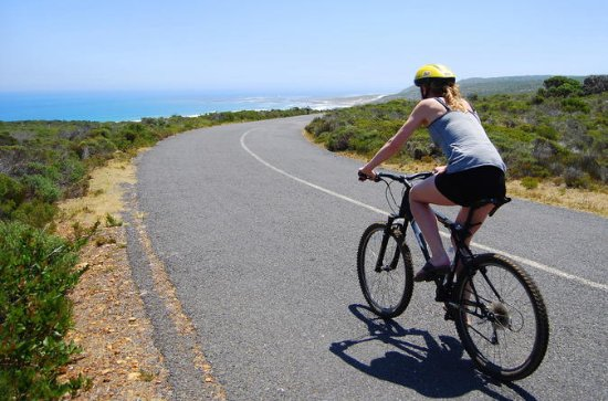 Full Day Cape Point and Peninsula Tour