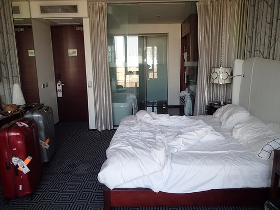 DaVinci Hotel and Suites: the on suite all glass