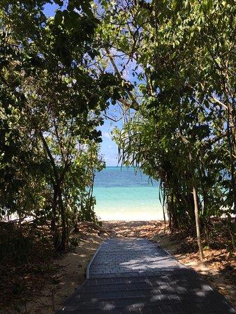 Green Island, Australia: photo4.jpg