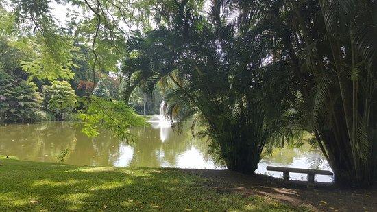 Couples Sans Souci: Pond area, .25 outdoor track, & tennis courts