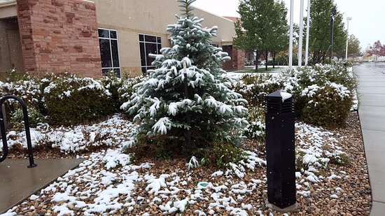 Embassy Suites by Hilton Loveland - Hotel, Spa and Conference Center: Snow on the Morning of Oct. 9th, 2017
