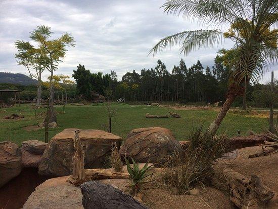 Australia Zoo: photo3.jpg