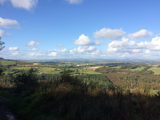 Dumfries, UK: End of a steep wooded climb