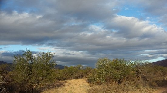 Eastern Cape, South Africa: Bhejane Game Reserve