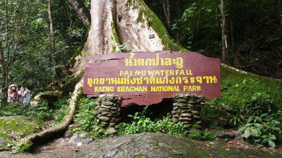 Pala-U Waterfall : Sign