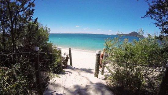 Shoal Bay, Australia: Cet endroit est magique pour moi, sauvage pas bondé de touristes, magnifiques plages, PS i love