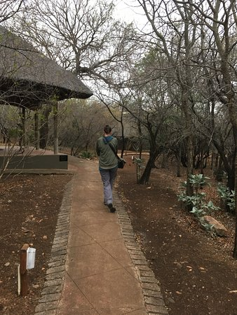 Malelane, Zuid-Afrika: Walking along path to our room (past other guest rooms).