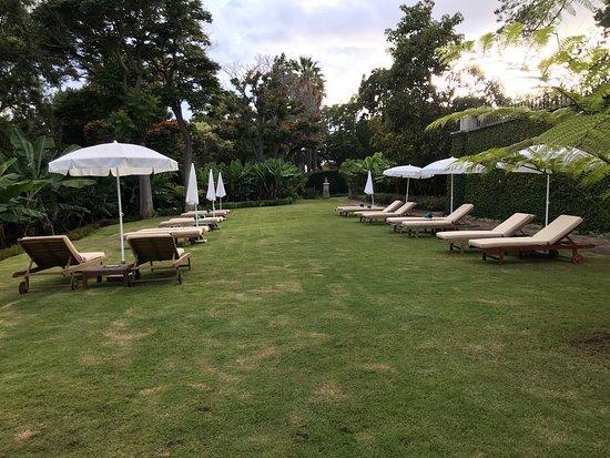 Quinta da Casa Branca: photo4.jpg