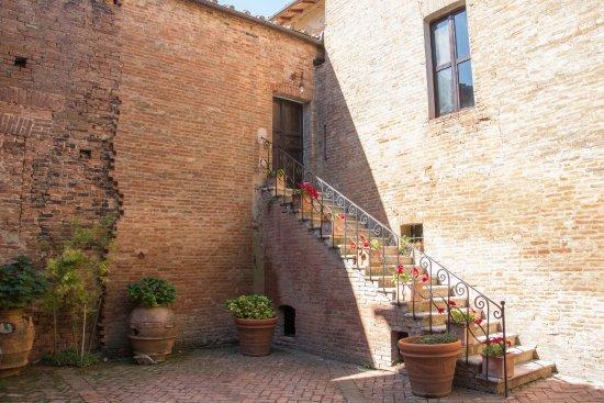 Montalcino, Italy: Particolare