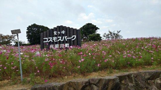 Aridagawa-cho, Japon : コスモスパーク入口