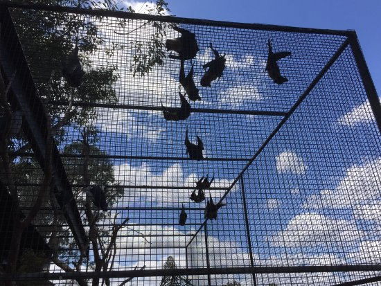 Nulkaba, Australië: photo0.jpg