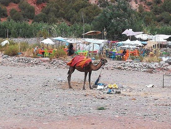 Marrakech-Tensift-El Haouz Region, Marokko: Chez les berbères