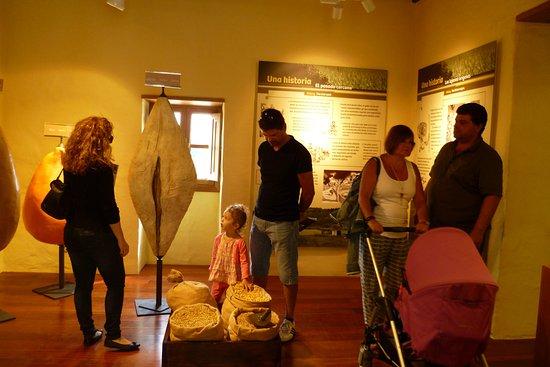 Valleseco, İspanya: Muy indicado para las familias y los niños. Para que aprendan cosas de nuestra cultura canaria