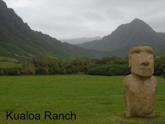 Kaneohe Image