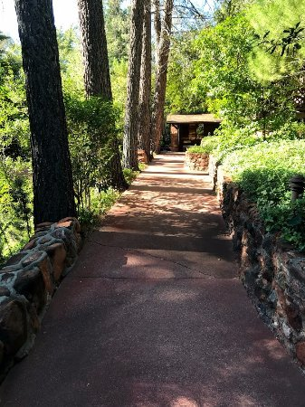 Briar Patch Inn: Pathway to the Owl