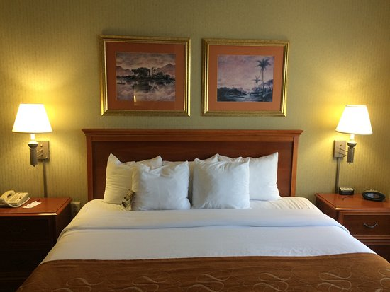 Comfort Suites Charlotte Northlake: Great service, big clean rooms and good price