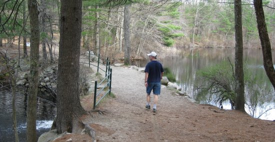Dover, MA: Passing by old mill ponds, along one of the woodlands many trails.
