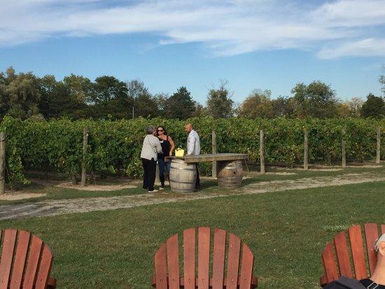 Inniskillin Wines at the Brae Burn Estate: photo4.jpg