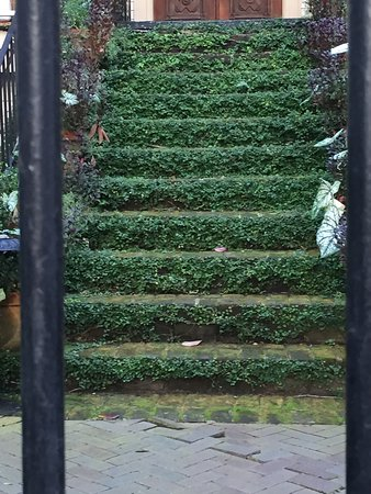 Forsyth Park: photo3.jpg