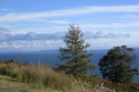 Isle of Jura, UK: La côte